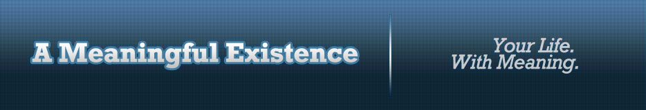 A Meaningful Existence header image